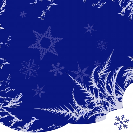 scenical: Winter pattern with snowflakes and frost.