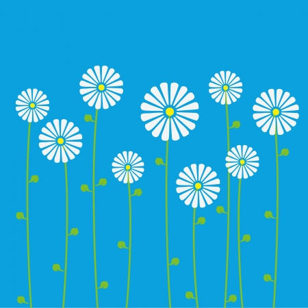 Background of floral pattern with daisies   Vector