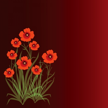 Background with red poppies.