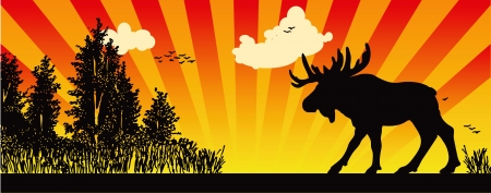 brute: Moose in the woods, creative illustration of hunting.