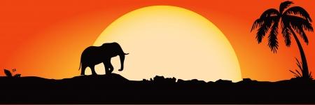 Elephant against the setting sun. Vector illustration.