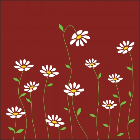 chamomile flower: Decorative background with camomiles. Floral background. Illustration