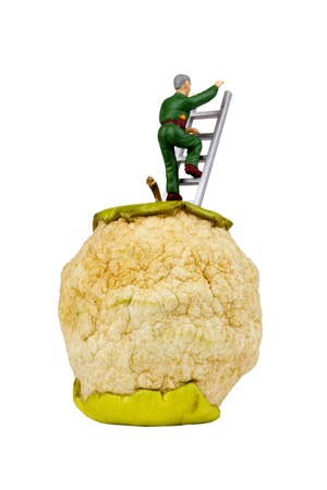 abandoning: Figurine of a man climbing a ladder from an apple with a silhouette of earth continents. Conceptual photograph representing a man leaving damaged earth to look for opportunity elsewhere.  Stock Photo