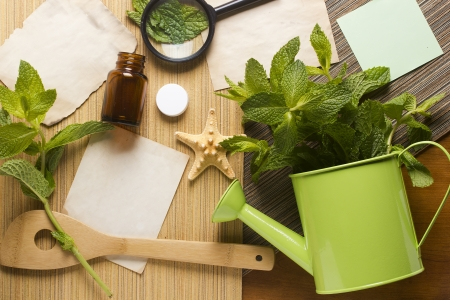 Mint leaves, papers, and decorative objects to portray the topics of alternative medicine or culinary. Stock Photo - 15632840