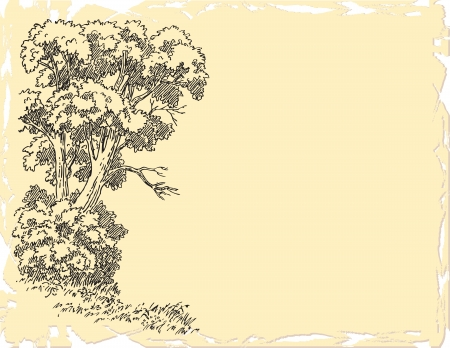 Drawing of a tree with a dry twig.