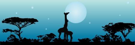 月の前にサバンナのキリンの夜。ベクトルの図。  イラスト・ベクター素材