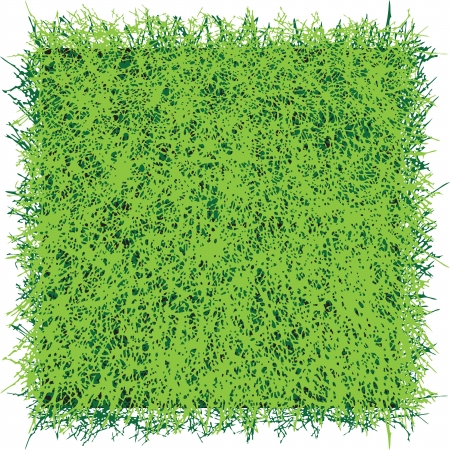 Square of turf grass for professional decoration
