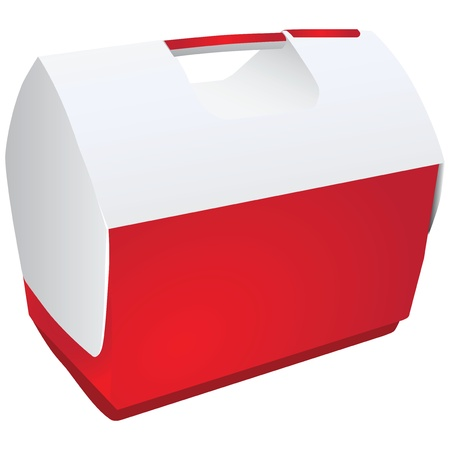 Portable cooler for picnics and trips in the car.