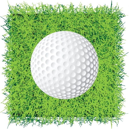 The ball for the game of golf on the grass lawn Stock Vector - 18003252