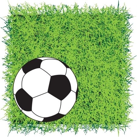 Square of turf grass for professional decoration. Vector illustration. Background. Stock Vector - 18117557