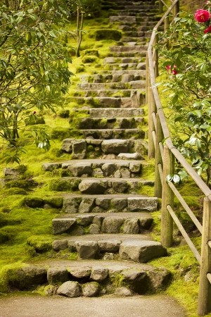 ascend: Decorative stone steps down the hill. Landscaping. Stock Photo