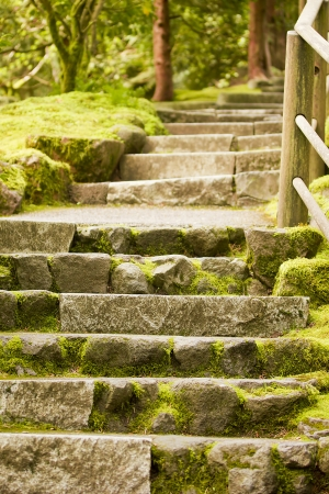 Landscaping.Decorative Stone Steps Down The Hill. Stock Photo   19264923