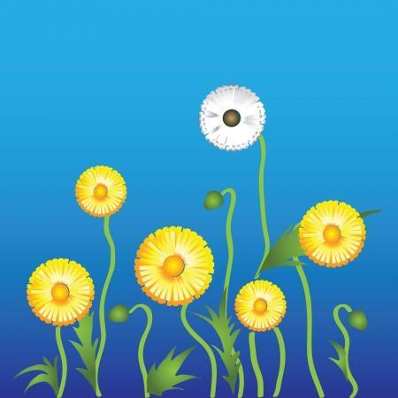 blow up: Dandelion flower on a green background. Vector. Illustration