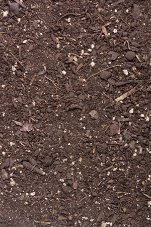 Option soil for planting at home. Background. Stock Photo - 19351064