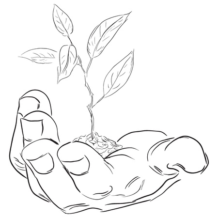 Man's hand with a branch. Vector illustration.
