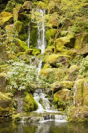 Cascading waterfall in a peaceful scene of nature. photo