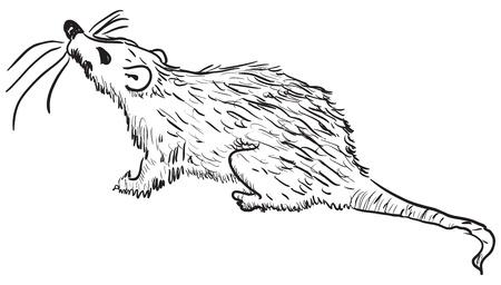 Figure rodent pests - rats. Vector illustration. Cartoon.