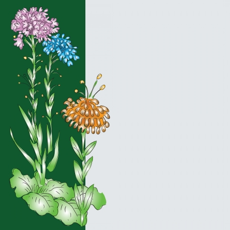 Fantastic flowers as decoration design. Vector illustration. Vector