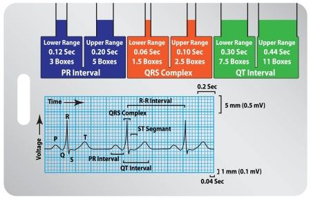 plotting: Calculation tool electrocardiogram as a badge