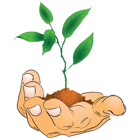 earth handful: Mans hand with a branch. Vector illustration.