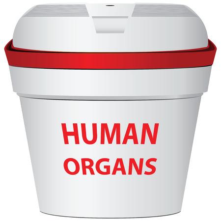 transporting: Portable fridge for transporting donor organs. Vector illustration. Illustration