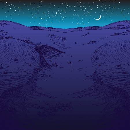 Desert night with the moon and stars. Vector illustration.  イラスト・ベクター素材
