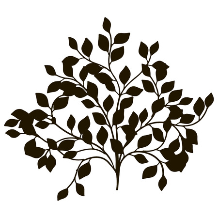 Ornamental tree for decoration work. Vector illustration.