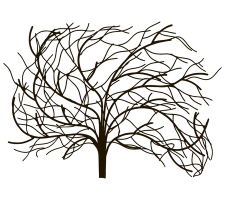 Decorative image of a tree without leaves. Vector illustration. Stock Vector - 23472512