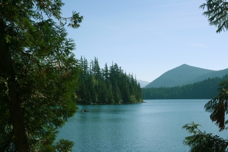 Mountain lake with beaches covered with pine trees.