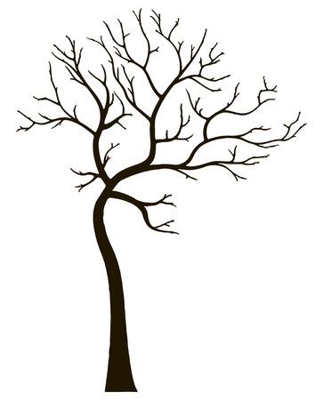 deciduous tree: �rbol de hoja caduca Ornamental y sin hojas. Ilustraci�n del vector.