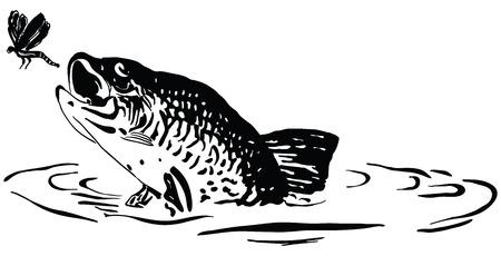 魚は水から跳躍トンボを狩り。漫画。