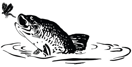 bass fish: Fish hunts a dragonfly jumping out of the water. Cartoon. Illustration