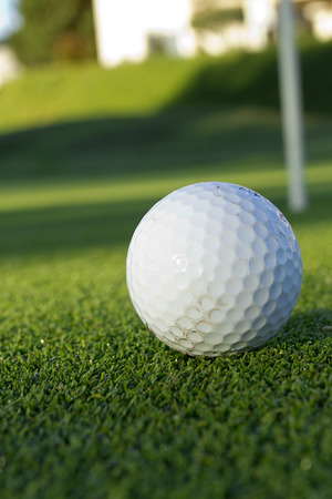 Ball for golf on grass lawn. Sports. photo