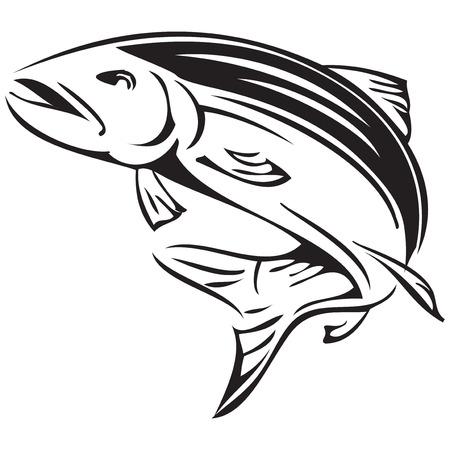 アラスカのサケ河川のシンボルです。ベクトル イラスト。  イラスト・ベクター素材