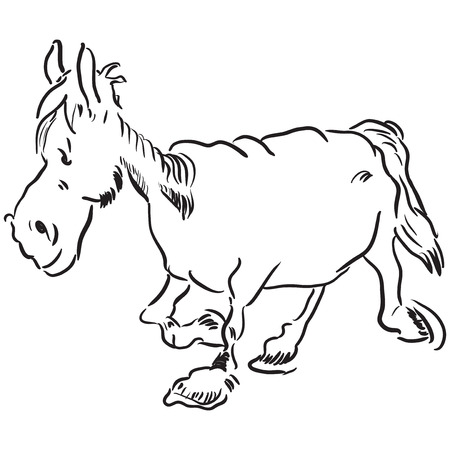 Running an old nag. illustration without trace. Vector