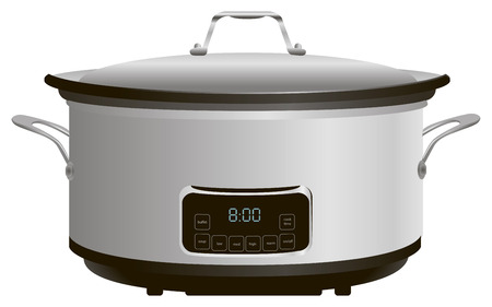 slow cooker: Programmable electric pan for cooking.