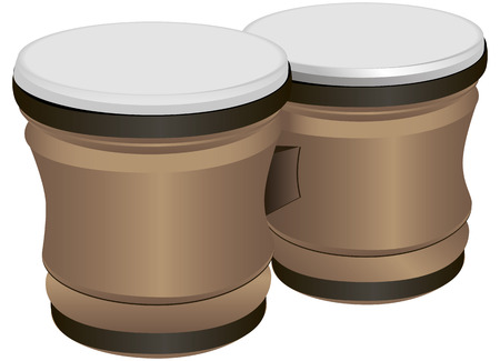 dual: Bongo Drums - dual musical percussion instrument of Latin American and African peoples.