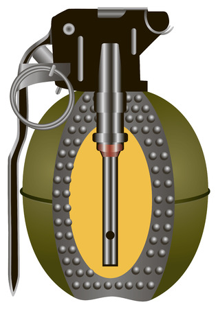 hand grenade: Internal structure of antipersonnel hand grenade. Vector illustration. Illustration