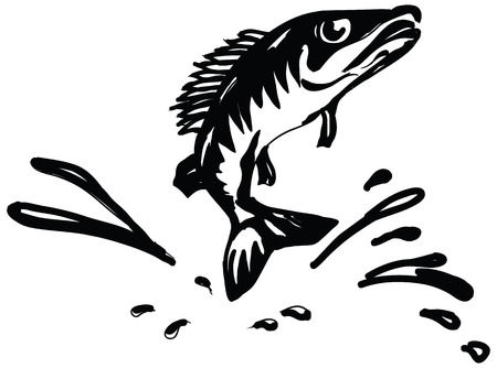 marinelife: Ruff fish jumps out of water. Vector illustration.