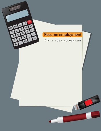 Summary of employment positions for an accountant. Vector illustration.
