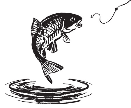 trout fishing: Fish jumping out of the water. Vector illustration.