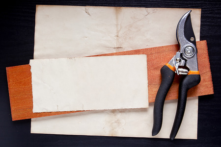 handtool: Clippers on the paper as a background for an industrial design.