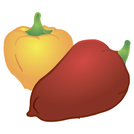 Sweet yellow and red peppers, used in cooking. Vector illustration.