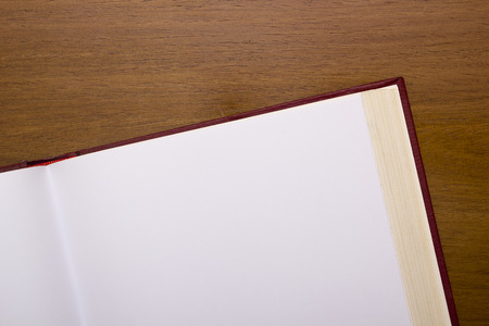 wood turning: Open book with blank pages for posting information.