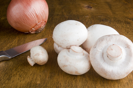 agaricus: Agaricus - Mushrooms are used as an ingredient in many cooking. Stock Photo