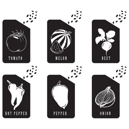 Packaging seeds of various vegetables. Vector illustration.