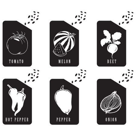 Packaging seeds of various vegetables. Vector illustration.