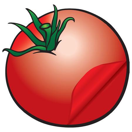 Tomato with skinning symbolic tomato. Vector illustration.