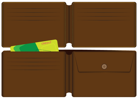 Leather wallet with a credit card and a place for coins. Vector illustration.