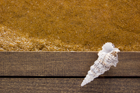 waters  edge: Shell the waters edge on a wooden platform. Stock Photo